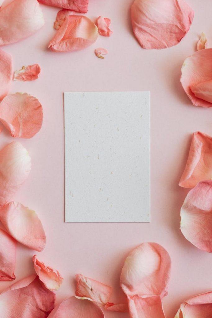 ภาพโทน Pastel-กระดาษ